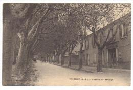 Cpa Du 04-VOLONNE- Avenue Du Bèalage - Frankreich