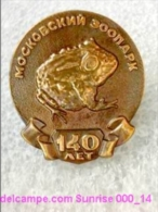 Animals: Big Frog - Moscow Zoo Park Anniversary / Uncommon Heavy Badge_000_an5680 - Animaux