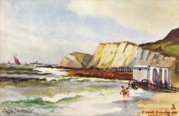 Cliffs, Ventnor  (Z4022 - Ventnor