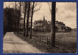 29 LANDERNEAU Le Calvaire - Landerneau