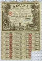 Sté Industrielle Commerciale Et Financiere à Pondichery - Afrique