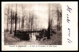 Souvenir De BRUXELLES - Le Bois De La Cambre - Le Petit Pont - 1900  // - Places, Squares