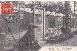 23257 LE PERRAY Yvelines  Villa Jeannette,chenil Du Baron Rothschild -244 Lib Nouvelle Rambouillet -meute Chien