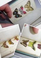 PAPILLONS 1817 CHARLES MALO 11 Planches Gravées + Fr ; 32 Papillons Aquarellés - Livres, BD, Revues