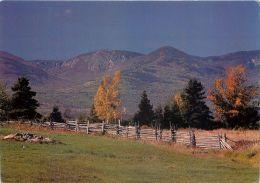Rural Scene, Quebec QC, Canada Postcard - Quebec