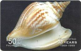 SOLOMON ISLANDS $50 SHELL SHELLS 1999 PIN 1ST ISSUE 1 YEAR TYPE ONLY THICK PLASTIC READ DESCRIPTION !!