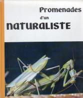 Promenades D'un Naturaliste - Jean-Claude Roché - Editions IMA - Complet Avec Toutes Ses Images. - Nature