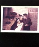 Photographie - Photo Légion étrangère - 1958 - Algérie -  AFN - Djenien Bou Rezg-  Légionnaire Avec Bouc - War, Military