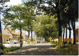 Baarle Hertog Nassau Turnhoutseweg - Baarle-Hertog
