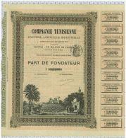 Cie Tunisienne, Tres Déco - Afrique
