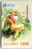 Carte Téléphonique De Chine - Singe (Recto-Verso) (JS) - Télécartes