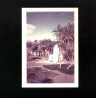 Photographie - Photo Légion étrangère - AFN - Algérie  Djenien Bou Rezg 1958 Vue Sur Mosquée - War, Military