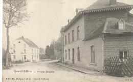 Vi61  -   Grand Halleux  - Avenue Jacqmin    - 2 Scans - Vielsalm