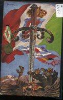 ILLUSTRATORE  TANNOZZI   CON MEDAGLIA - Guerra 1914-18