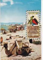 MALLORCA.   -    EL ARENAL.  Playa. - Mallorca