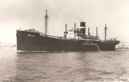 """Lisboa - Navio """"Mello"""". Ship. Paqueboat. Barco. Navire. Bateau. Portugal. - Handel"""