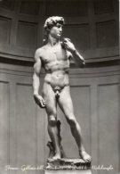 Firenze - Cartolina IL DAVID DI MICHELANGELO (Galleria Dell'Accademia) - G48 - Sculture