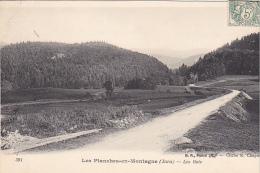 23272 LES PLANCHES EN MONTAGNE Les Bois  -391 BF Paris - France
