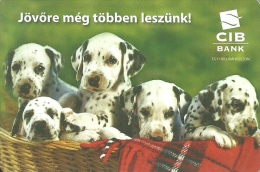 DOG * DOGGIE * DALMATIAN * ANIMAL * CALENDAR * CIB Bank 2008 * Hungary - Calendriers