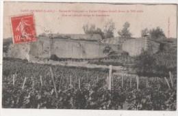 SAINT PATRICE - Ruines De Vomulons - Ancien Château Féodal - Non Classificati