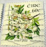 Ireland 2004 Flower Hawthorn 60c - Used - 1949-... Repubblica D'Irlanda