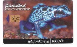 Hungary - Frog - Frosch - Protected Animals Beka - Hungary