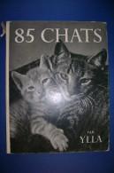 PFT/30 Ylla 85 CHATS Guilde Du Livre Lausanne Anni '50 /GATTI FOTOGRAFIE IN NERO - Animali Da Compagnia