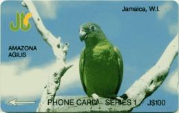 JAMAICA-13D-AMAZON AGILIS - Giamaica