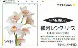 Télécarte Japon * FLEUR * ORCHID (3473)  Orchidée Orquídea Orquidée Orchid * Flower Phonecard JAPAN * - Blumen