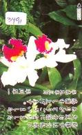 Télécarte Japon * FLEUR * ORCHID (3491)  Orchidée Orquídea Orquidée Orchid * Flower Phonecard JAPAN * - Flowers