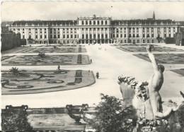 Vienne - Chateau De Schönbrunn Et Parterre De Fleurs - Non écrite - Château De Schönbrunn