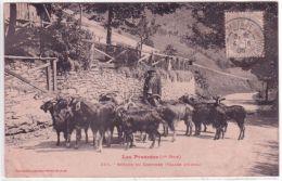 Les Pyrénées - ( 1ère Série) 287 - Retour Du Chevrier ( Vallée D'Oueil ) Ed. Labouche - Luchon