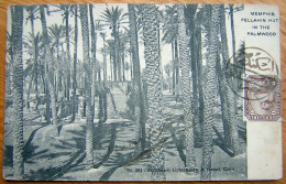 Cpa EGYPTE - MEMPHIS - Fellahin Hut In The Palmwood - Egypt