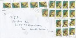 Ghana 2004 Tamale Gold Finch Bird Cover - Zangvogels