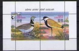 1999 TURKEY WORLD ENVIRONMENT DAY - BIRDS SOUVENIR SHEET MNH ** - Passereaux