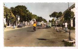 Tchad - FORT LAMY - Avenue Edouard-Renard - �dit. Billeret n� 2675 - format 9 x 14 cm