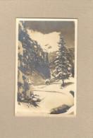 Berwang Auf Dem Weg Nach Rinnen 1929 Gel. Nach Deutschland 2 Bilder - Berwang
