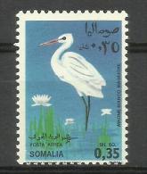 SOMALIA - 1968 Birds (Great Egret) 35c MNH **        SG 491  Sc C104 - Somalia (1960-...)