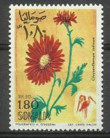 SOMALIA - 1969 Flowers (Chrsanthemum) 1s80 MNH **        SG 501  Sc 346 - Somalia (1960-...)