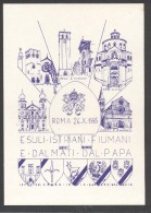 6389-ESULI ISTRIANI-FIUMANI E DALMATI DAL PAPA-ROMA-1985-FG - Manifestations