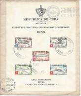 Cuba BF Oblitéré, SUPERBE!!! Tirage 15 000ex!!! Expo.phil.aérien - Blocs-feuillets