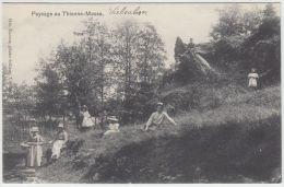 21068g THIENNE-MESSE - Paysage - Vielsalm - Vielsalm