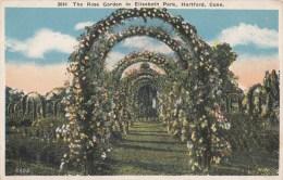 BT17286 Hartford Conn The Rose Garden In Elizabeth P   USA Scan Front/back Image - Hartford