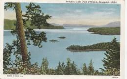 BT17291 Idaho Sandpoint Beautiful Lake Pend D Oreille USA Scan Front/back Image - Etats-Unis