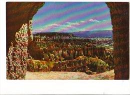BT19423 Utah On Navajo Trail Bryce Canyon National P USA Scan Front/back Image - Bryce Canyon