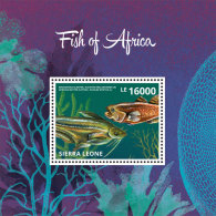 Sierra Leone-Marine Life-Fish Of Africa - Marine Life