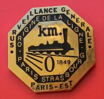 Pin´s Train Paris Strasbourg Surveillance De La Ligne 1849 - TGV