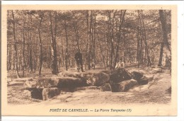 FORET DE CARNELLE - La Pierre Turquoise (3) - Dolmen & Menhirs