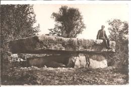 La Pierre Martine - Environs De Figeac - Dolmen & Menhirs