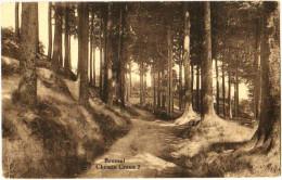 Beersel - Chemin Creux 2 - Beersel